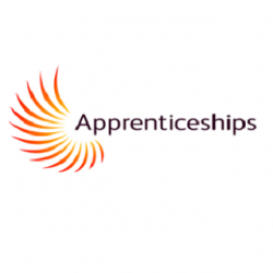 Apprentices, Apprenticeships and craftsmanship in general